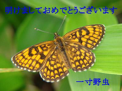 b0033112_030515.jpg