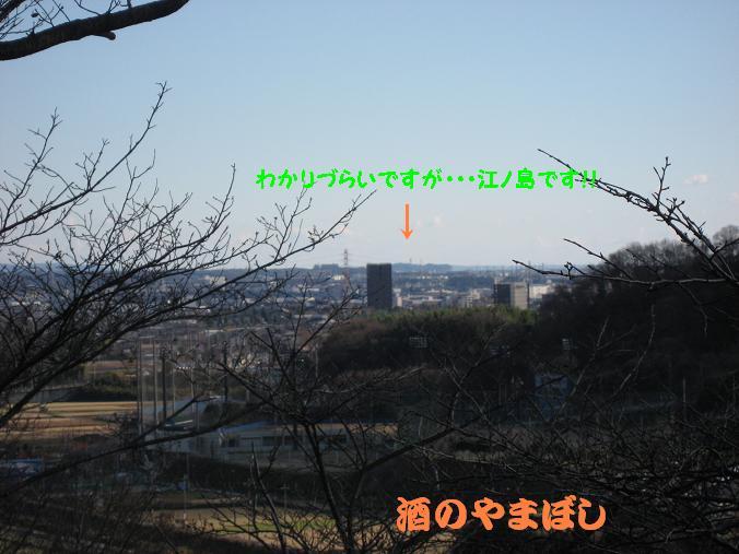 a0056521_1416830.jpg