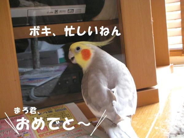 f0132055_0221960.jpg