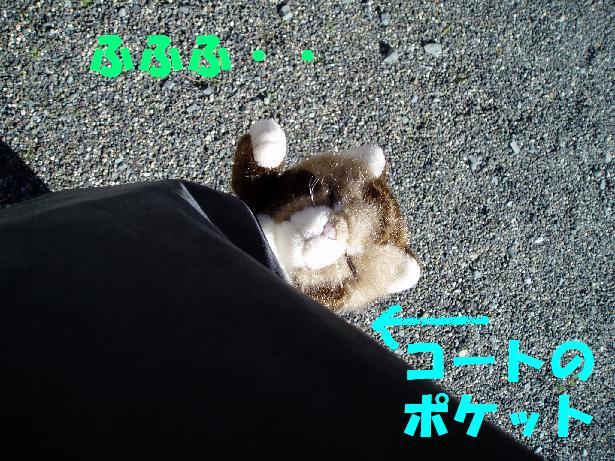 b0059978_2235468.jpg