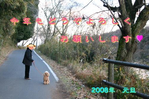 f0118293_20112712.jpg