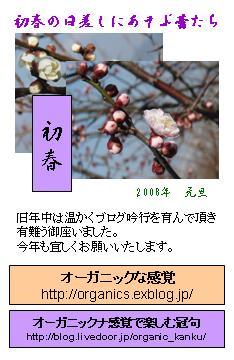 d0051106_13105181.jpg