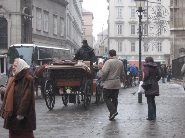 中欧の旅の記録~ウィーン_d0101846_20245760.jpg