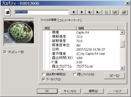 b0029648_247857.jpg