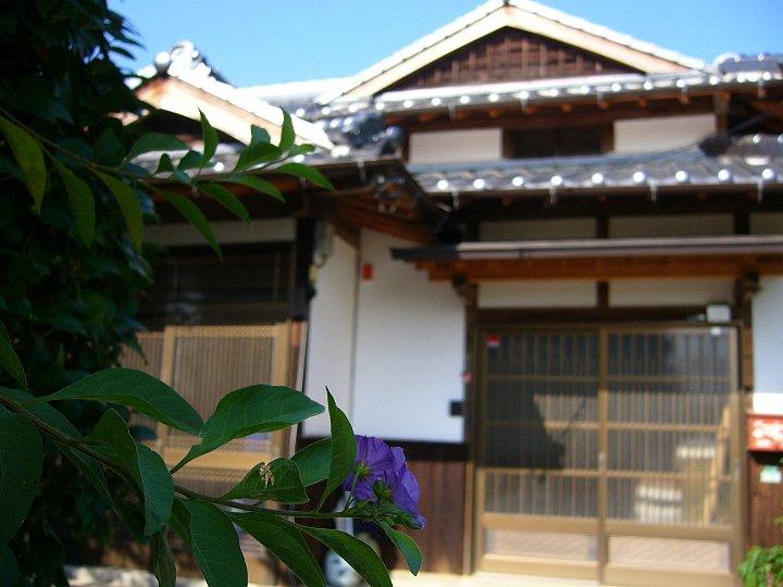 福岡のS氏住宅_c0112559_17234122.jpg