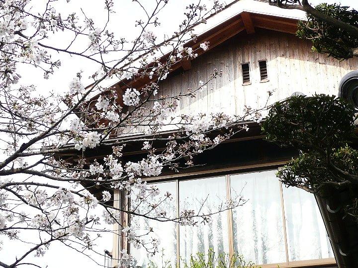 福岡のS氏住宅_c0112559_17264969.jpg
