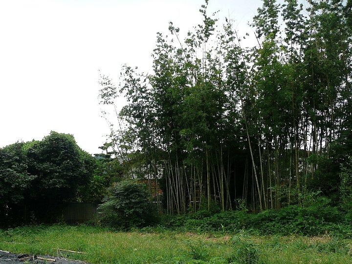 福岡のS氏住宅_c0112559_17295257.jpg