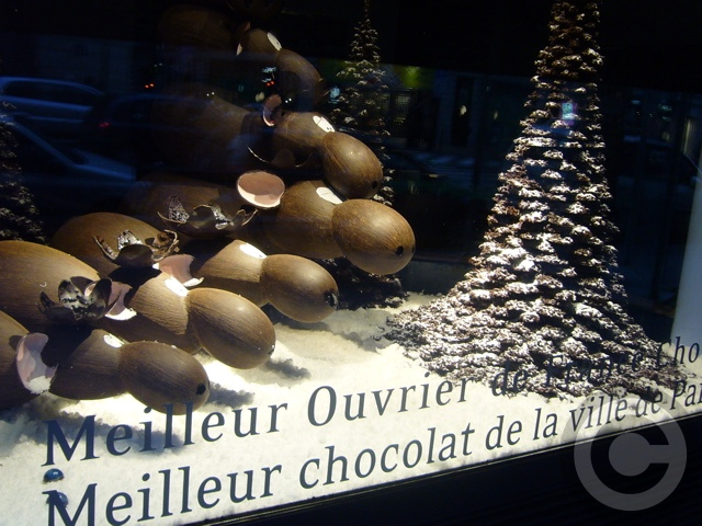 ■Patrick Roger 街角のチョコレート(1月1日パリ)_a0014299_5563077.jpg