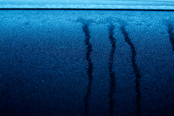 冬「寒度」_e0117517_1732772.jpg