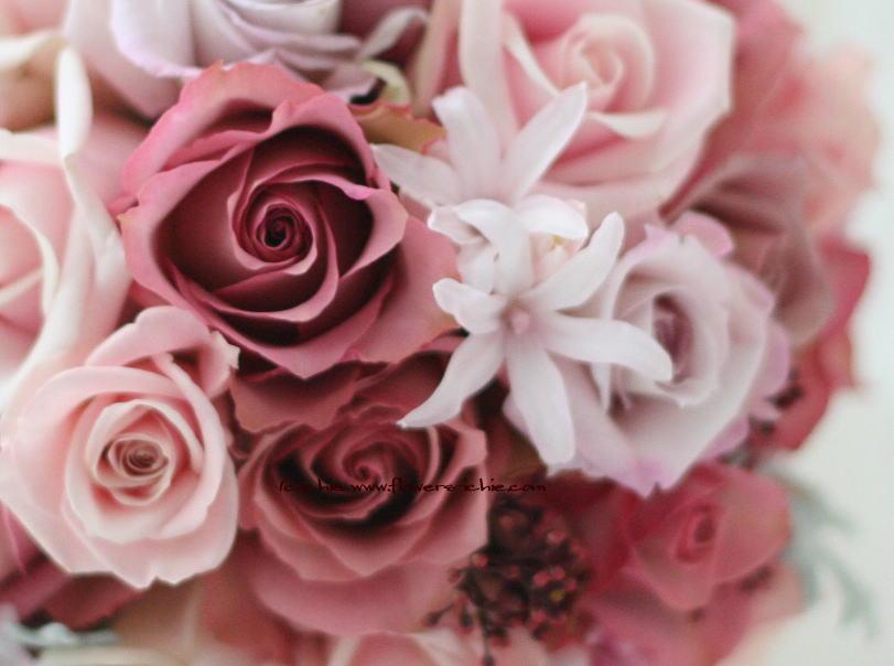 花の写真_a0042928_19415475.jpg