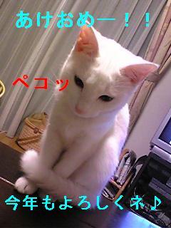 f0106531_18285679.jpg
