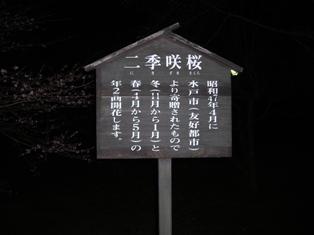 年末年始 丹後への犬連れ車中泊の旅 琵琶湖編_b0080342_10393996.jpg