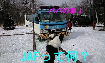 a0100564_19181462.jpg