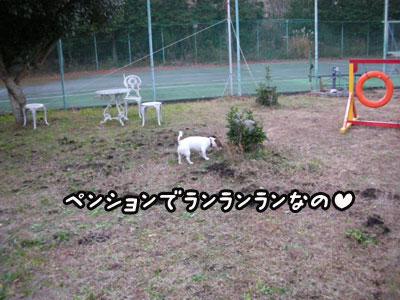 f0129214_1515422.jpg