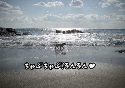 f0129214_16225490.jpg