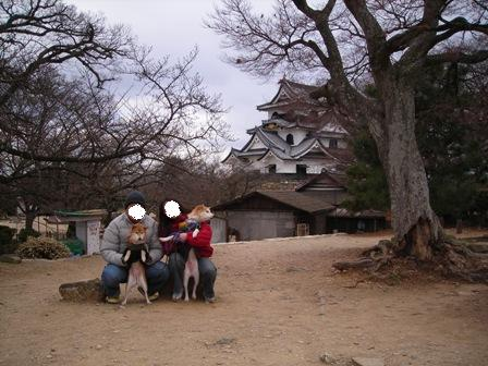 年末年始 丹後への犬連れ車中泊の旅 彦根城編_b0080342_8431778.jpg