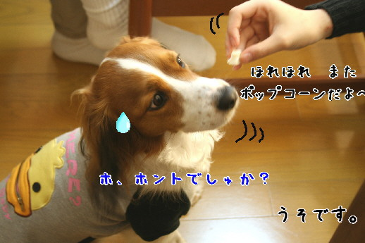 d0013149_033180.jpg