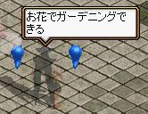 f0115259_1833392.jpg