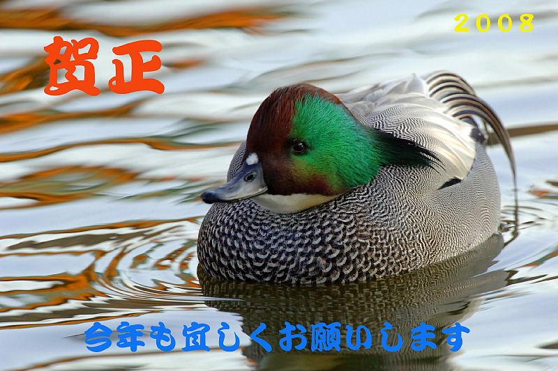 f0059882_2344553.jpg