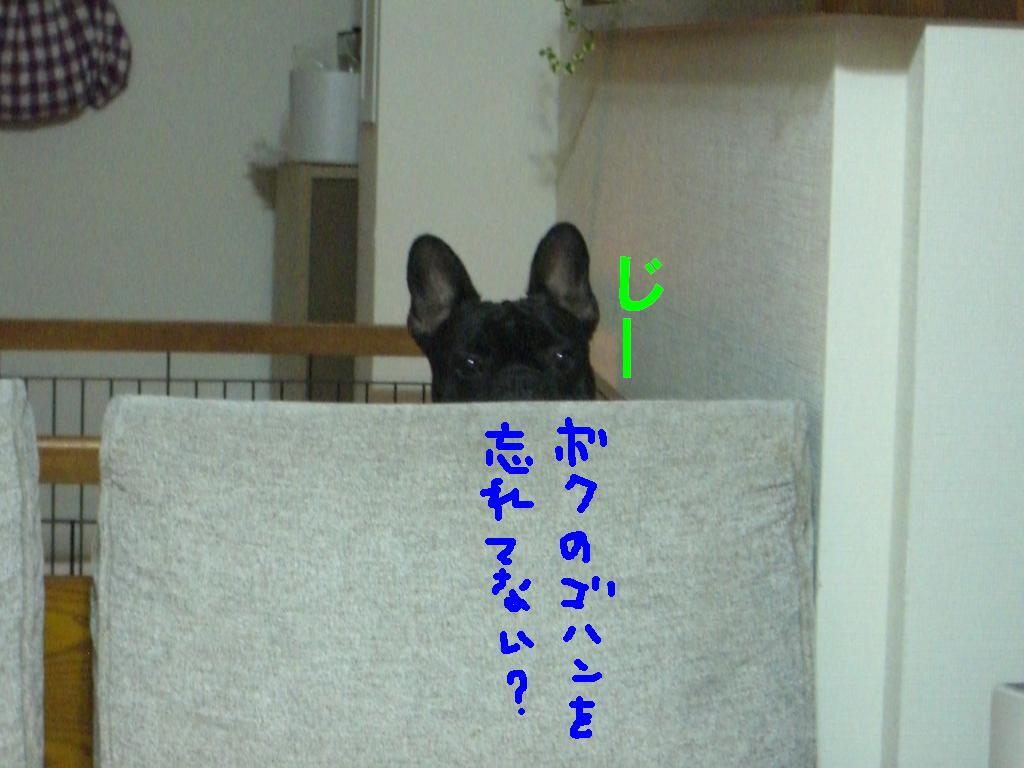 c0113109_2124286.jpg