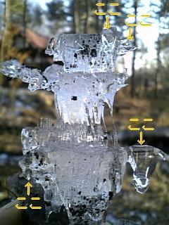 冬の庭_f0148927_1837104.jpg