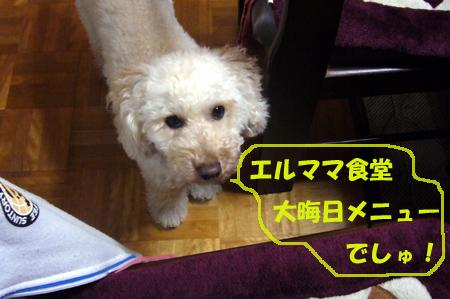 d0070047_15181459.jpg