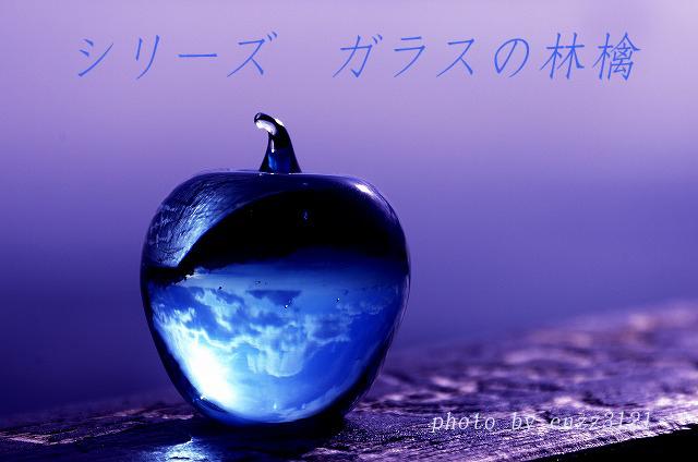 d0019260_0232736.jpg