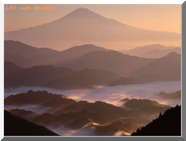 第9回富士山写真大賞展_b0093088_792279.jpg