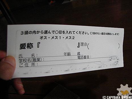 新春第二弾カピバラは…_f0138828_0531850.jpg