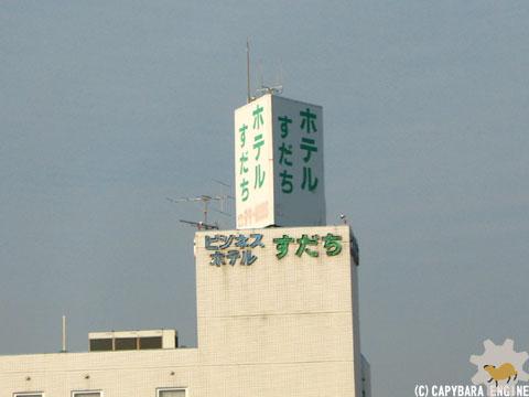 新春第二弾カピバラは…_f0138828_141445.jpg