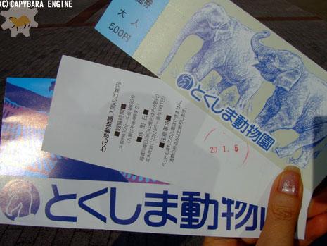 新春第二弾カピバラは…_f0138828_15687.jpg