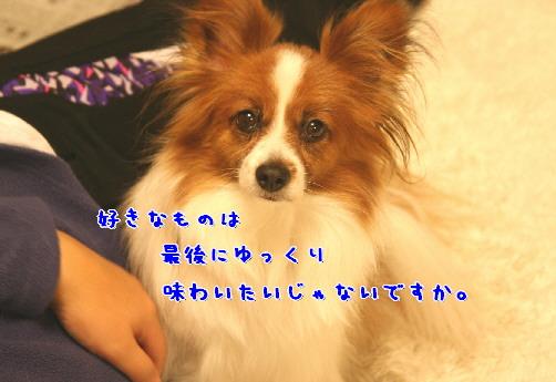 d0013149_0535662.jpg