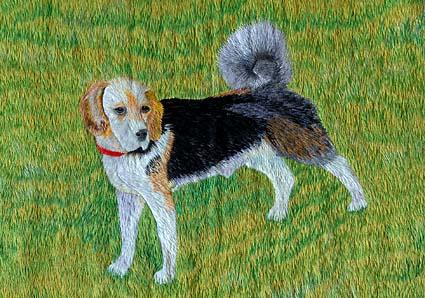 ビー&北海道犬_a0070350_1145618.jpg