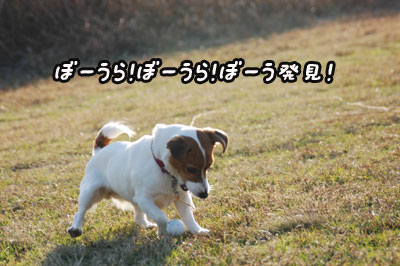 f0129214_13411897.jpg