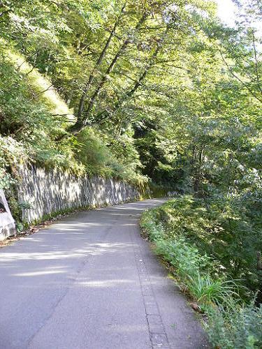 飛騨高山旅行 城山展望台_e0009722_15254874.jpg