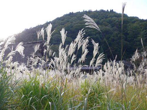 飛騨高山旅行 城山展望台_e0009722_15343225.jpg