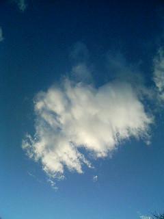 あの雲に_a0103940_13263233.jpg