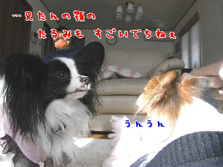 d0013149_22385451.jpg