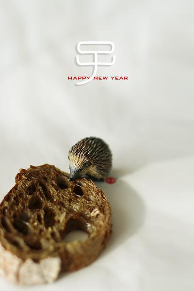 雑穀バゲットと子と七草_f0149855_1127211.jpg