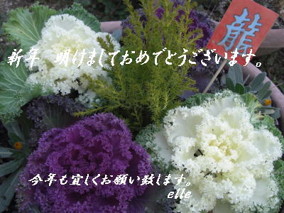 f0035756_18223034.jpg