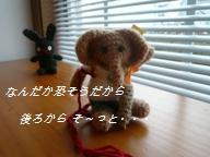 d0134785_1357116.jpg