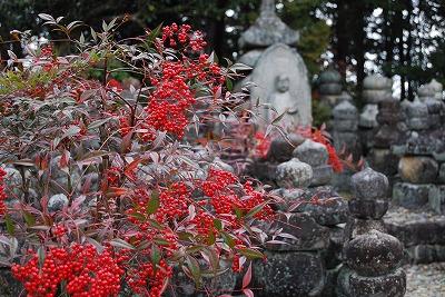 阿育王山(あしょかおうざん)・石塔寺(いしどうじ)へ_c0124100_1321541.jpg
