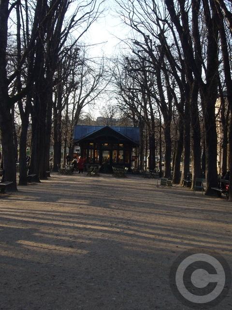 ■新年のリュクサンブルグ公園(パリ)_f0063227_9222091.jpg