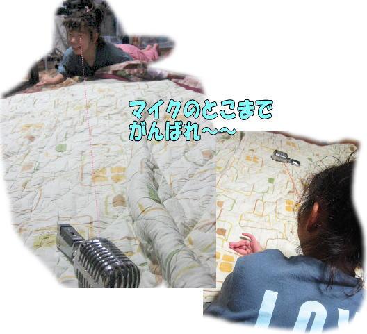 f0082367_11493444.jpg