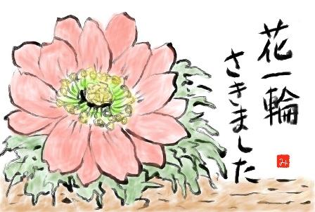 f0120483_1957397.jpg