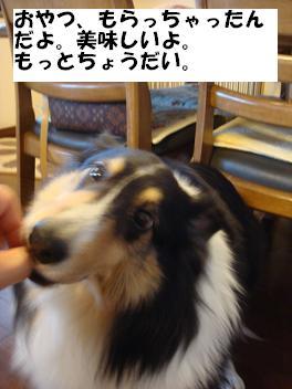 f0046854_2036710.jpg