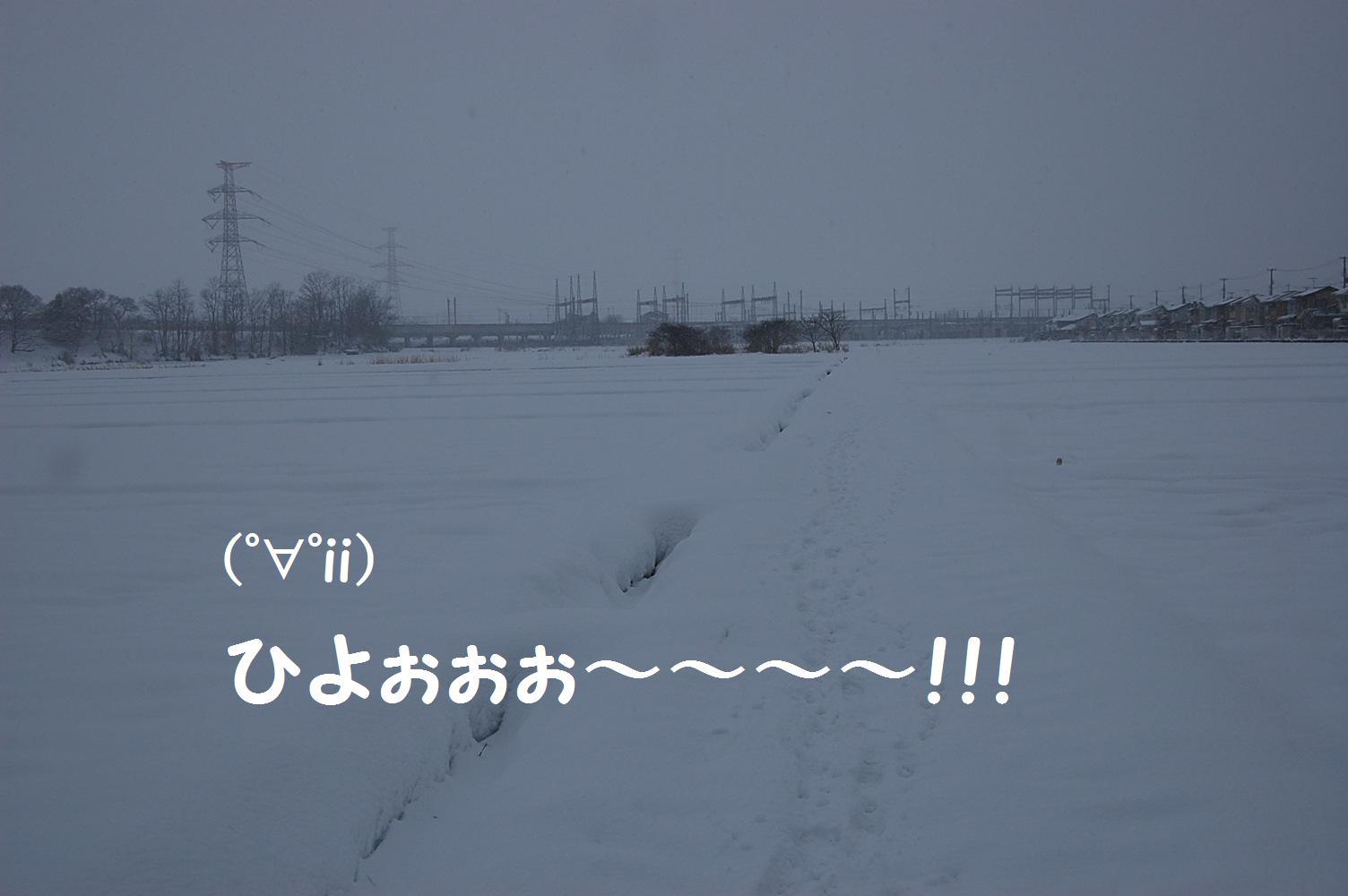 b0112758_1711833.jpg