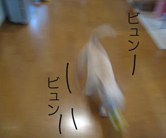 b0116162_22485423.jpg