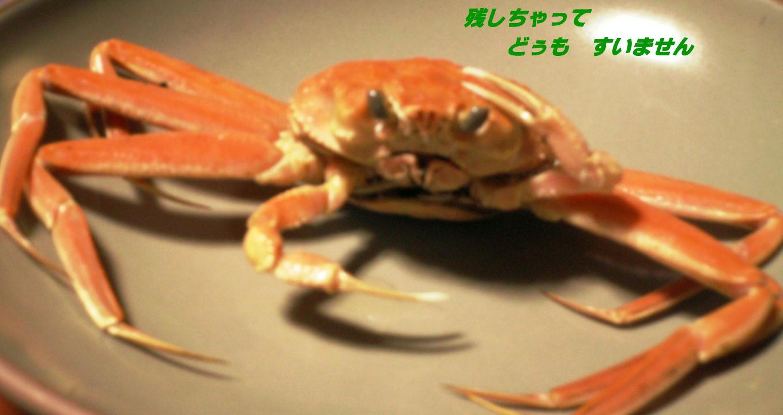c0012205_14145427.jpg