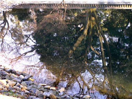 京都御苑と「閑院の宮」邸跡_e0048413_22582941.jpg